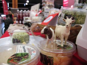 Slow Food Market Bern 2016