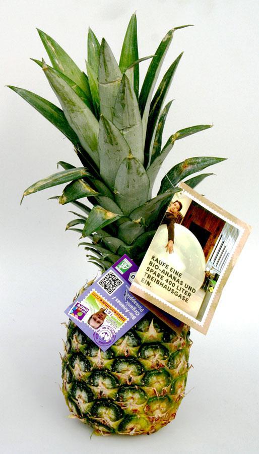 was unser essen wirklich kostet bio ananas wird zum botschafter f r mehr preistransparenz. Black Bedroom Furniture Sets. Home Design Ideas