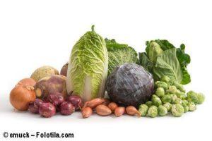 wintergemuese-vitaminbomben-fuer-gourmets