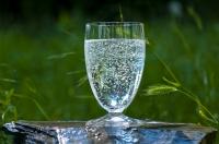 Bioverfügbarkeit von Mineralwasser