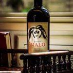 Malo Wein