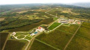 Rumänien - Weißwein von Avincis