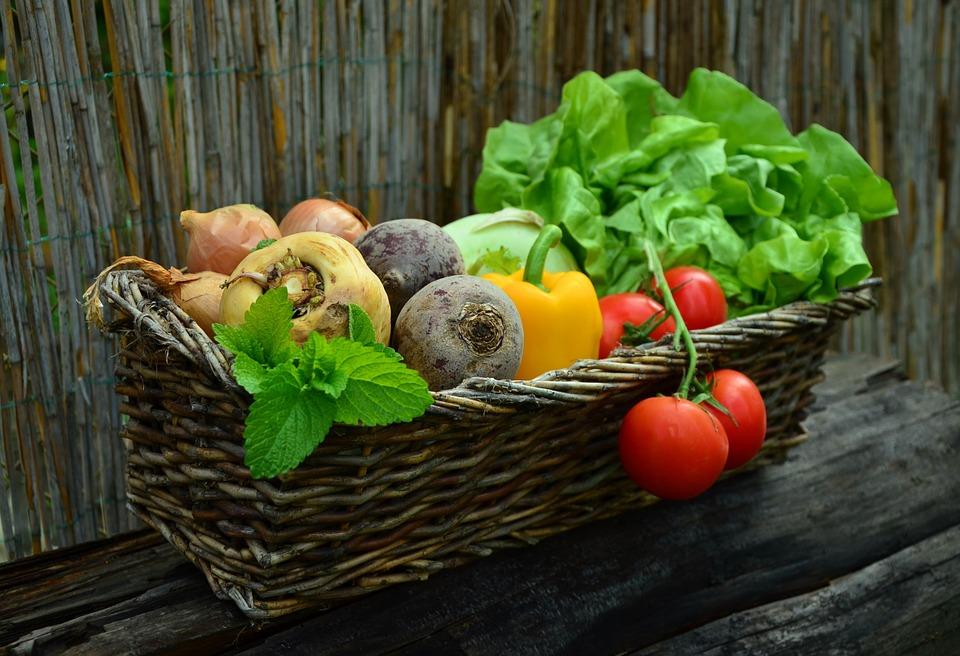 Problem Food Waste - aktueller denn je