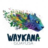 WAYKANA Guayusa- BIO-Kräutertee