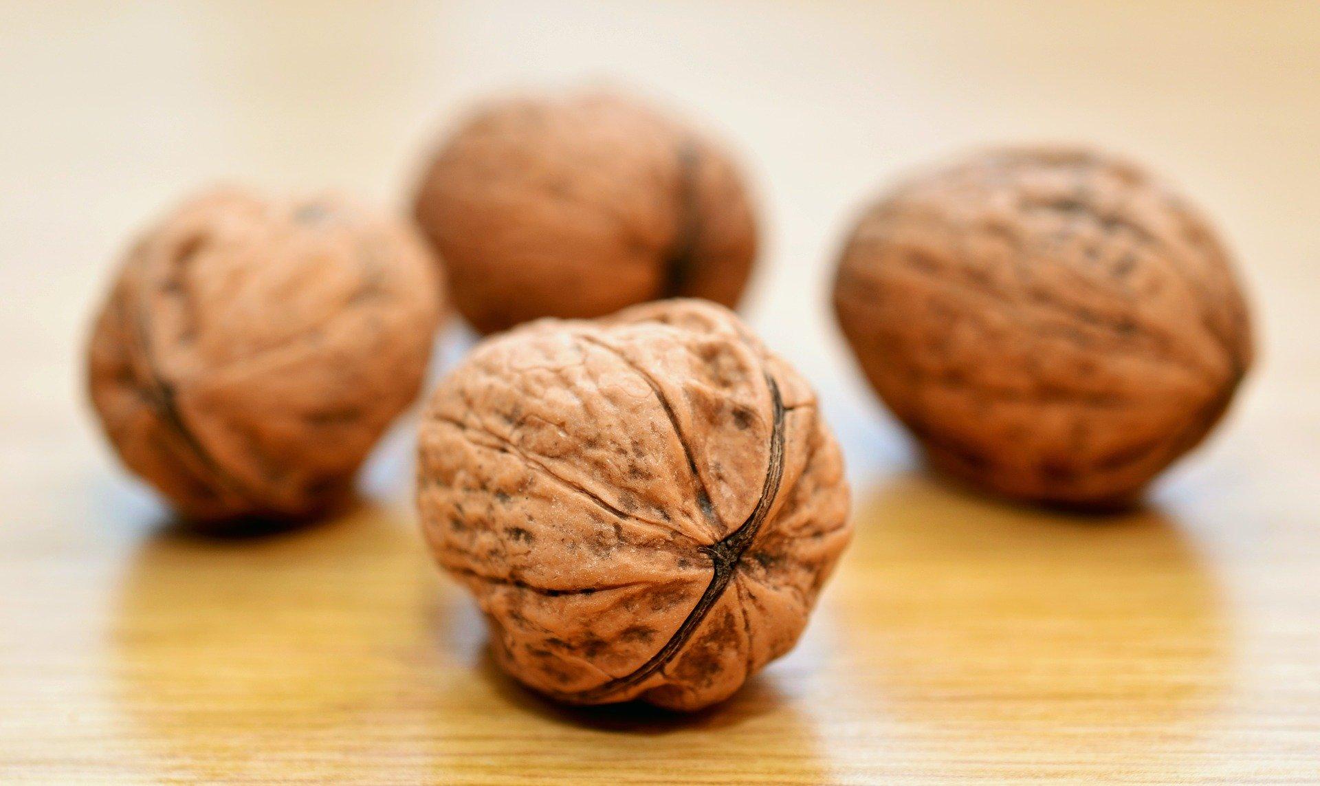Produktion von Baumnüssen und getrockneten Früchten wird sich auf 4,5 Millionen bzw. 3,3 Millionen Tonnen belaufen