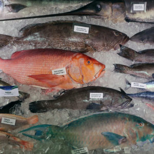 Grüne Woche 2020: Hohe Wertschätzung für Fisch und Meeresfrüchte